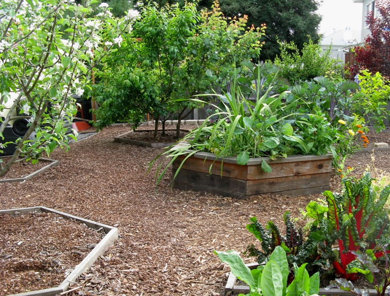 Bay Friendly Garden Tour | Urban Agroecology
