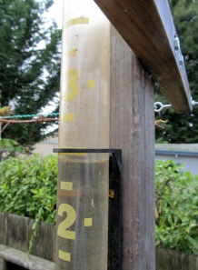 Rain gauge at 2.5 inches from yesterday's storm.